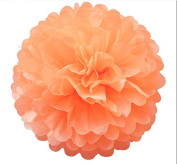 Generic Pack of 10 Peach Wedding Decorative Props Tissue Paper Pompoms Pom Poms Balls Wedding Party Home Decoration 10""