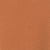 LaCarte Peach Pastel Paper Pack of Five - 50cm . X 60cm .