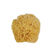 WHOA BABY! Ultra Soft & Gentle Small Sea Wool Bath Sponge