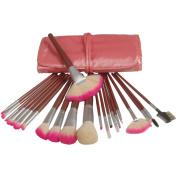 Fashion Zone 22 Pro Light Pink Make up Mineral Brush Set