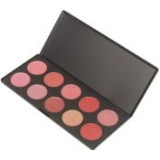 Coscelia 10 Pro Lip Colour Palette Reddish Pink
