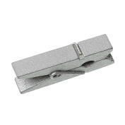 Godagoda Wood Clothespins for Game Favours Craft Silver Colour Pack of 100