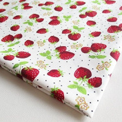 Red Juicy Strawberry Fabric on Light Blue 90cm by 90cm Wide (1 Yard)