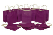 Medium Kraft Gift Bag, Solid Colour, Bulk set of 2 Dozen