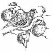 Gourmet Rubber Stamps Cling Stamps 8.3cm x 17cm -Partridge In A Pear Tree