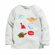 Baby Box Baby Boys' kids Toddler long sleeve dinosaur T-Shirts
