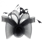 Jelinda Women's Black Mesh Flower Hair Fascinator Clip with Feathers