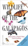 Wildlife of the Galapagos