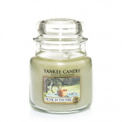 Yankee Candle Picnic In The Park Medium Jar Candle, Fresh Scent
