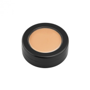 Full Coverage Creamy Concealer/T.V. Touch Foundation, Hypoallergenic