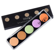 CCbeauty Professional 5 Colour Camouflage Concealer Palette Face Makeup Portable Case,#2