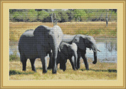 Elephant Family Counted Cross Stitch Kit By Orcraphics