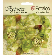 Petaloo Botanica Minis Decorative Flower, 2.5cm , Pistachio, 11-Pack