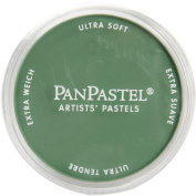 PanPastel Ultra Soft Artist Pastel, Permanent Green Shade
