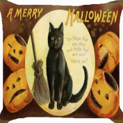Cushion cover throw pillow case 46cm Halloween witch pet black cat broom pumpkin lantern funny both sides image zipper