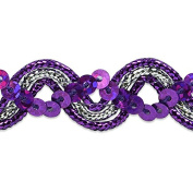 Expo International Karmen Sequin Metallic Braid Trim Embellishment, 20-Yard, Purple/Silver