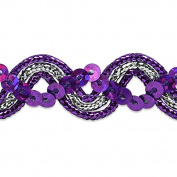 Expo International Karmen Sequin Metallic Braid Trim Embellishment, 20-Yard, Purple/Silver