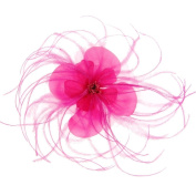 Jenny Silk Flowers with Feathers Fascinator on Clip Fuchsia