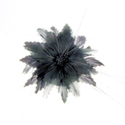 Marie-Claude Feather Flower Fascinator on Clip Black