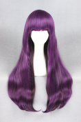 75cm Long Straight Lolita Style Daily Fashion Wigs For Women/Ladies/Girls