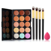 Chinatera Professional Makeup Tools 15 Concealer Creame + 4PCS Brush + Sponge Puff
