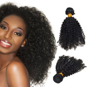 Feelontop® Cheap 6a Malaysian Curly Hair Bundles 10pcs/lot Malaysian Hair Kinky Curly Hair Curly Weave Hair Extensions