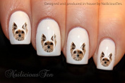 NAILICIOUS TEN Yorkshire Terrier Design Nail Wraps Water Transfers 21pcs Decals ST8182