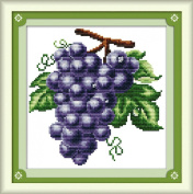AngelGift Needlecrafts Stamped Counted Cross Stitch Set, Fruit - Grapes