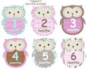 Monthly Baby Girl Stickers Plaid Owls UNCUT Argyle Damask Stripes Dots Girl Owls