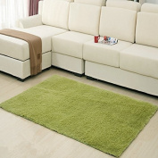 MBIGM Home Decorator Modern Shag Area Rugs Super Soft Solid Living Room Carpet Bedroom Washable Rug and Carpets, 0.6m X 1.2m [80 * 120cm] Grass Green