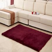MBIGM Home Decorator Modern Shag Area Rugs Super Soft Solid Living Room Carpet Bedroom Washable Rug and Carpets, 0.6m X 1.2m [80 * 120cm] Wine