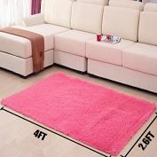 MBIGM Home Decorator Modern Shag Area Rugs Super Soft Solid Living Room Carpet Bedroom Washable Rug and Carpets, 0.6m X 1.2m [80 * 120cm] Rose