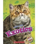 Exotics (Cool Cats)
