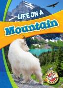 Life on a Mountain