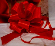 Small Christmas Red Gift Pull Bows, Silky Fabric Satin, Set of 10