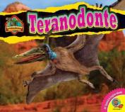 Teranodonte