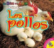 Los Pollos (Ninos y la Ciencia