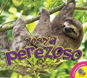 El Perezoso (Yo Soy)