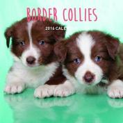 Border Collies 2016 Calendar