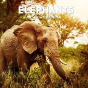 Elephants 2016 Calendar