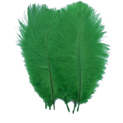 Generic Lime Green 10-12inch 25-30cm Ostrich Feather Home Decoration DIY Craft Pack of 10