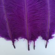Generic Purple 10-12inch 25-30cm Ostrich Feather Home Decoration DIY Craft Pack of 10