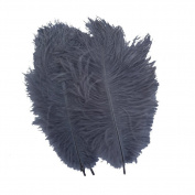 Generic Grey 10-12inch 25-30cm Ostrich Feather Home Decoration DIY Craft Pack of 10