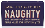 Santa, This Year I've Been NAUGHTY! Triple Milled Soap 200g
