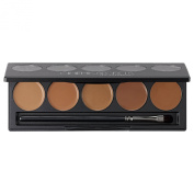 Cinema Secrets Ultimate Foundation 5-In-1 Pro Palette 15ml (New Version) (500A Series