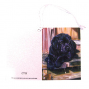 Gift Tags w/ String - Labrador