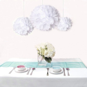 Saitec ® Pack of 12pcs Mixed Sizes White Tissue Paper Flower Pom Poms Pompoms Wedding Birthday Party Home Decoration