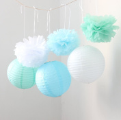 HoHoDeal 9PCS Mixed White Blue Mint White Tissue Paper Pom Poms and Paper Lantern Wedding Party Hanging Decoration