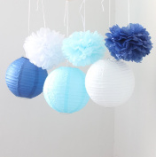 HoHoDeal 9PCS Mixed Royal Blue Aqua Blue White Tissue Paper Pom Poms and Paper Lantern Wedding Party Hanging Decoration