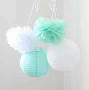 HoHoDeal 6 Pcs Mixed Mint White Tissue Paper Pom Poms and Paper Lantern Wedding Birthday Party Baby Girl Room Decoration